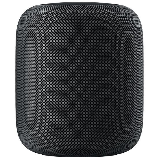 Enceinte sans fil Apple Homepod Gris sidéral - Enceinte connectée