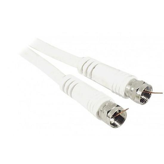 Câble Satellite Câble coaxial à fiche F (antenne satellite) - 2,5m