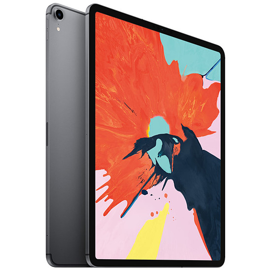 Tablette Apple iPad Pro 12.9 pouces 256 Go Wi-Fi + Cellular Gris Sidéral (2018)