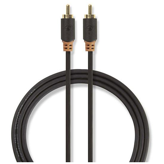 Câble audio RCA NEDIS Câble Audio Numérique RCA - 1m