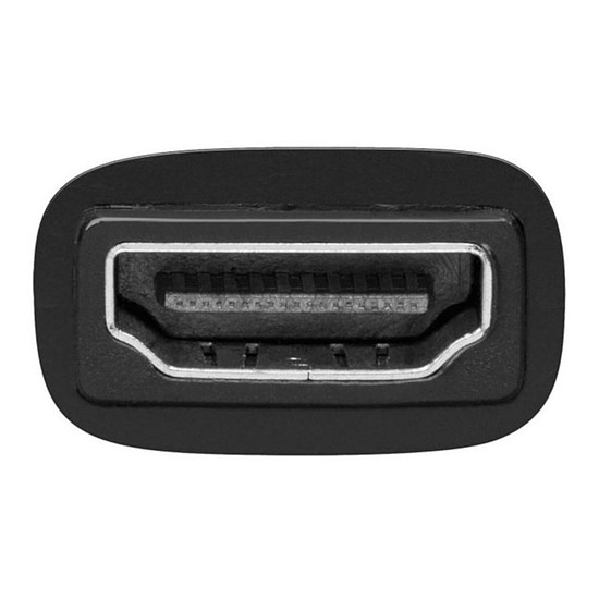 DVI Adaptateur DVI-D mâle / HDMI femelle - Autre vue