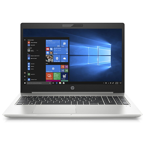 PC portable HP Probook 455 G6 Pro (6MQ66EA#ABF)