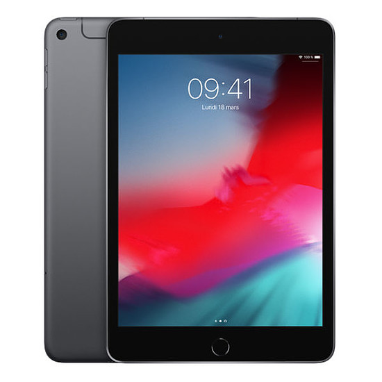 Tablette Apple iPad Mini 2019 (gris sidéral) - 4G - 256 Go - 3 Go