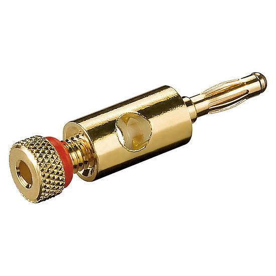 Adaptateur Fiche banane pour câble HP (rouge)