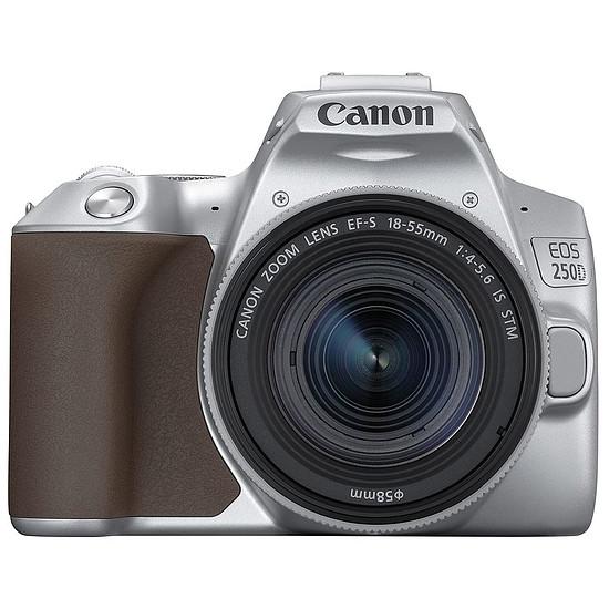 Appareil photo Reflex Canon EOS 250D Argent + 18-55 IS STM Argent