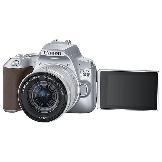 Appareil photo Reflex Canon EOS 250D Argent + 18-55 IS STM Argent - Autre vue