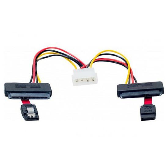 Serial ATA Câble SATA 2-en-1 avec alimentation Molex (pour 2 HDD ou SSD)