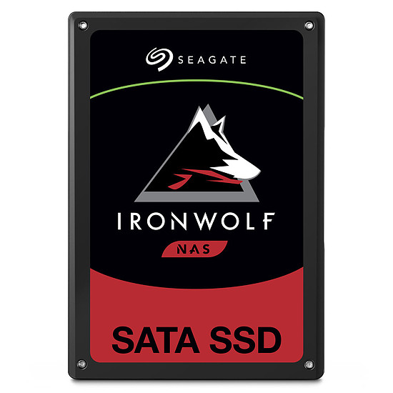 Disque SSD Seagate IronWolf 110 - 480 Go