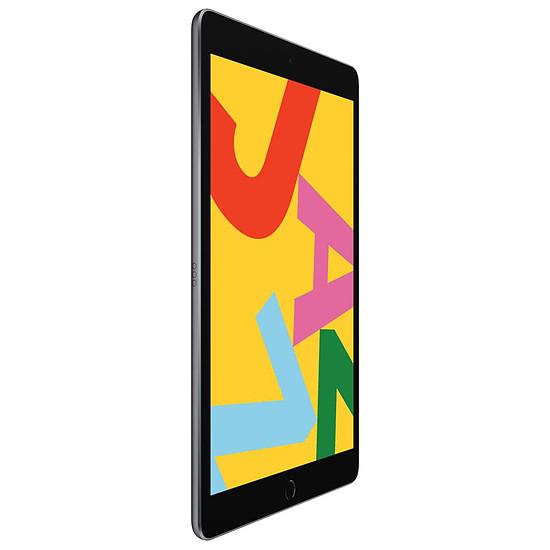 Tablette Apple iPad Wi-Fi + Cellular 10.2 - 128 Go - Gris (7 ème génération) - Autre vue