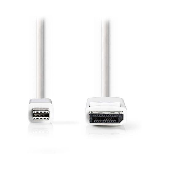 DisplayPort NEDIS Câble Mini DisplayPort mâle vers DisplayPort mâle