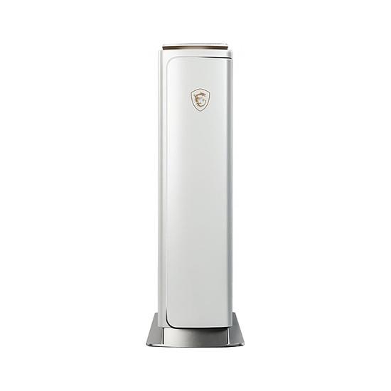 PC de bureau MSI Prestige P100X 10SE-248FR