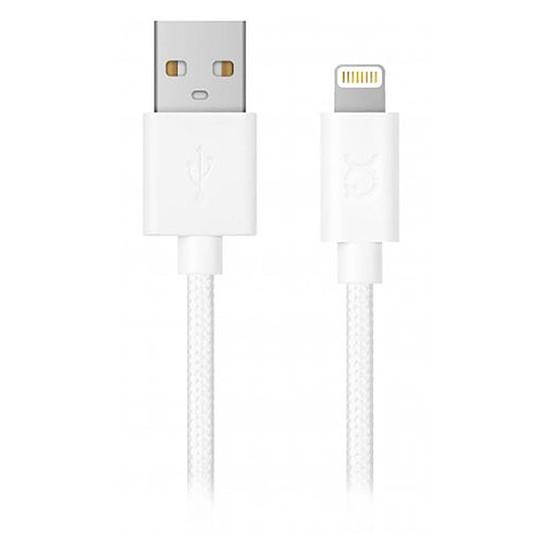 USB Câble USB-A vers Lightning (blanc) - 1,8 m