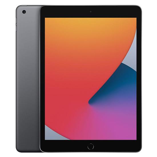 Tablette Apple iPad Wi-Fi 10.2 - 128 Go - Gris sidéral (8 ème génération)