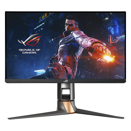 Écran PC Asus ROG Swift PG259QN