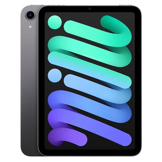 Tablette Apple iPad mini (2021) Wi-Fi - 64 Go - Gris sidéral